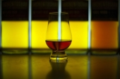 Artificial 'tongue' can distinguish between whiskies