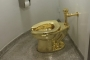 Artist hopes gold toilet taken by 'Robin Hood' types